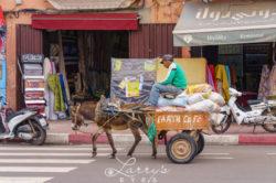 marrakesh34