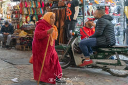 marrakesh39