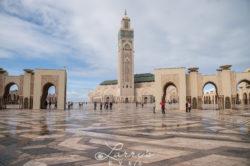 marrakesh46